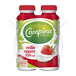CAMPINA ROOM VOL 250 ML 33 %